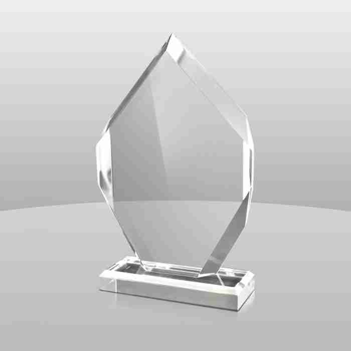 Premium Quality Custom Acrylic Trophy Award