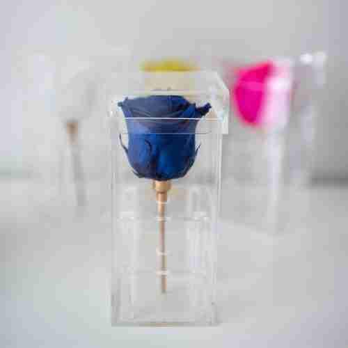 Custom forever roses acrylic box