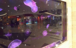 Advantages of acrylic jellyfish tanks